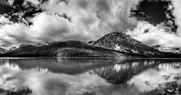 Panoramic view of Waterfowl Lake and Mount Chephren, Banff National Park, Alberta, Canada Black and white panoramic view of Waterfowl Lake and Mount Chephren, Banff National Park, Alberta, Canada lake waterfowl stock pictures, royalty-free photos & images