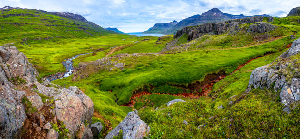 Panoramablick auf die Wildnis der Fjordlandschaft und Selbrekkufos – Foto