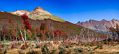 Panoramic view over magical austral forest, peatbogs and high mountains in Tierra del Fuego National Park, Patagonia, Argentina