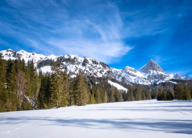 Panoramic view over snowy plateau Kaiserau with mountain Admonter Kalbling – Foto