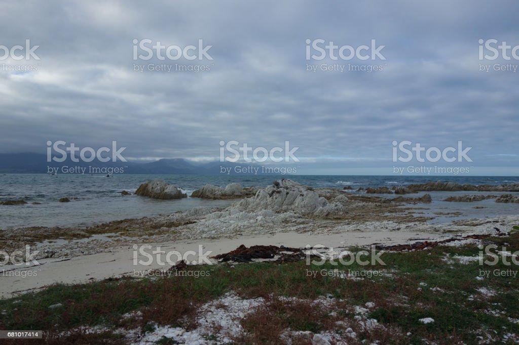 Panoramic view, Pacific coast of New Zealand, Otago Peninsula, Dunedin royalty-free stock photo