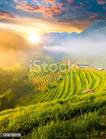 istock Panoramic view Sunrise and mist on mountain view at the north of thailand 1008783228