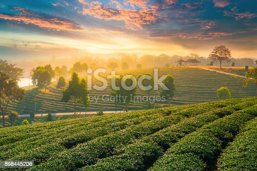 istock Panoramic view Sunrise and mist on mountain view at the north of thailand 898445206