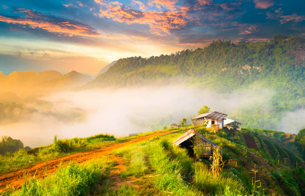 Panoramic view Sunrise and mist on mountain view at the north of thailand stock photo