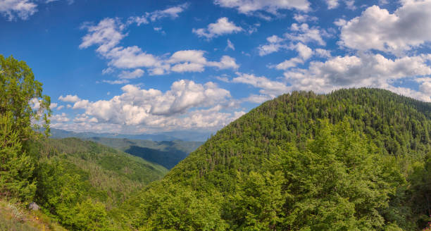 Panoramic view to the Rhodope mountain forest - Greece stock photo