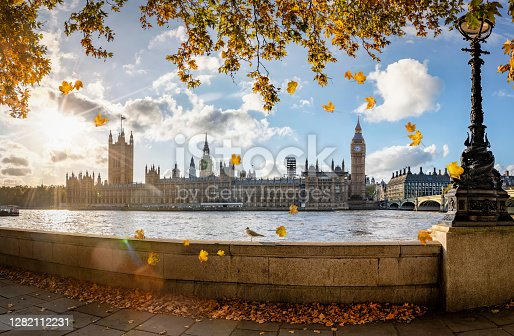 Panoramic view to Westminster Palace and Big Ben tower in London, UK, during golden autumn time with sunshine and colorful leafs falling from the trees
