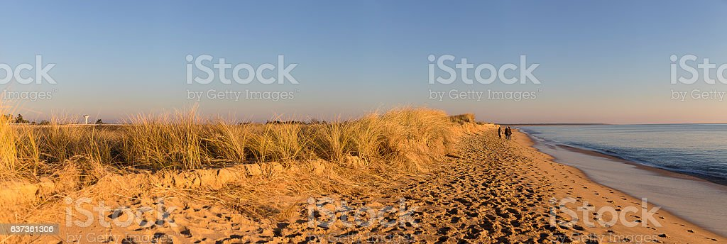 panoramic view with people walking on the beach at sunset stock photo