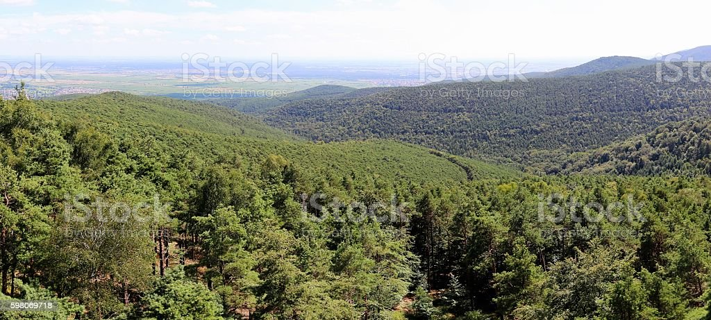 Panoramic views from the Palatinate forest stock photo