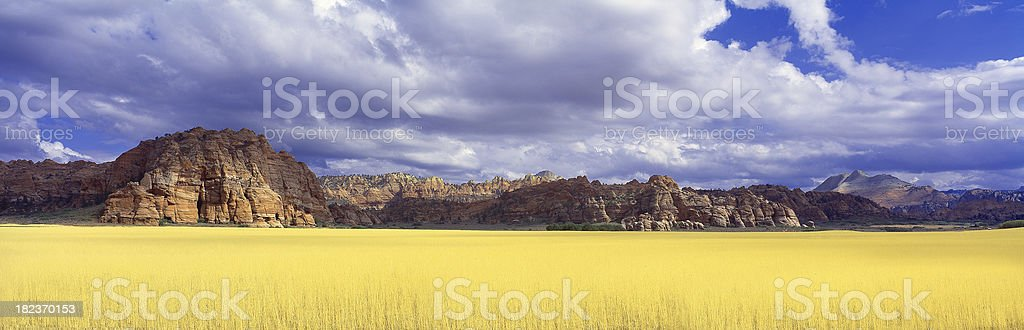 Panoramic Wheat field off of California/Arizona border on Route 66 royalty-free stock photo