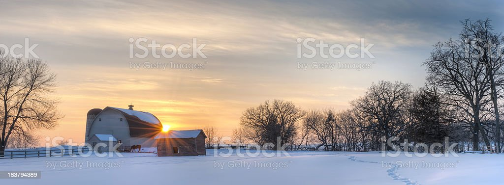 Panoramic winter landscape royalty-free stock photo