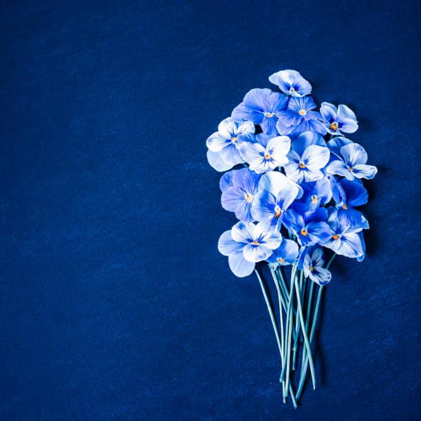 Stiefmütterchen Blumenstrauß. Blaue Blumen auf Marine blau Textur. Ansicht von oben, Flachliegen, Kopierraum. Klassischer blauer Hintergrund – Foto