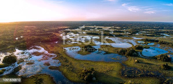 Pantanal photographed in Corumbá, Mato Grosso do Sul. Pantanal Biome. Picture made in 2017.
