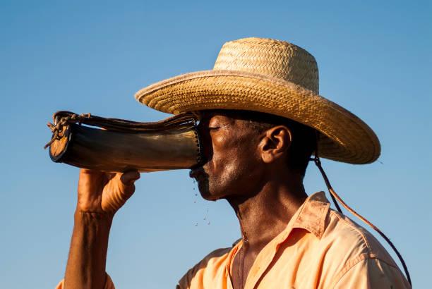 Pantaneiro bebendo água em uma guampa ou chifre stock photo