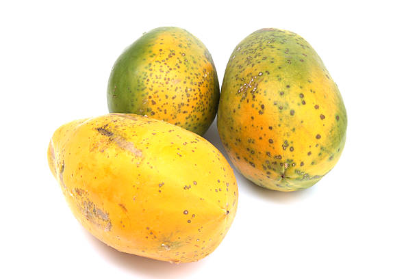 Papaya in weißem Hintergrund – Foto
