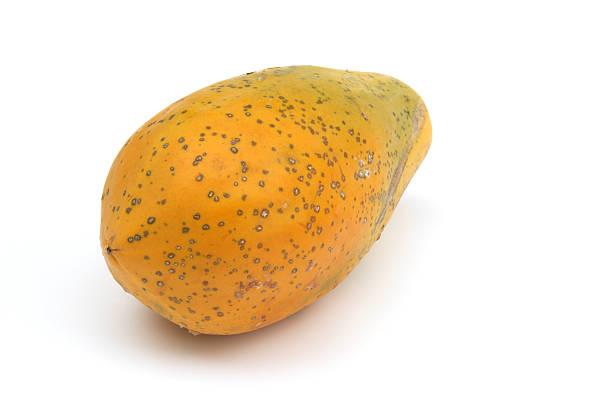 Papaya, isoliert auf weiss – Foto