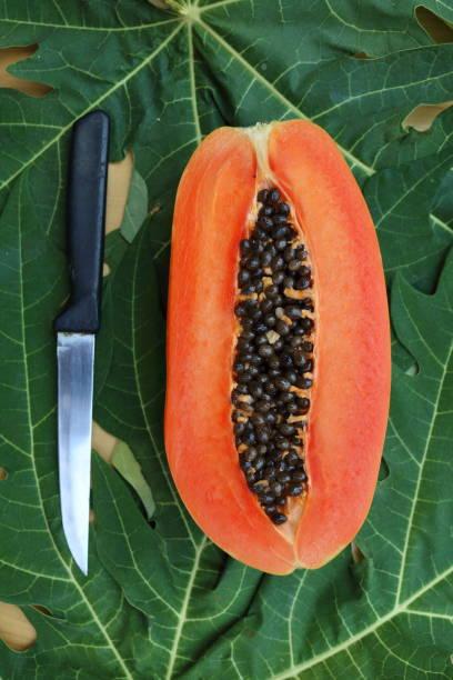 papaya_fruit_cut_half_with_knife stock photo