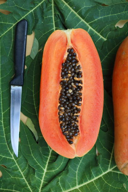 papaya_fruit_cut_half_with_knife_b stock photo