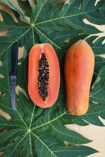 papaya_fruit_cut_half_with_knife_c stock photo
