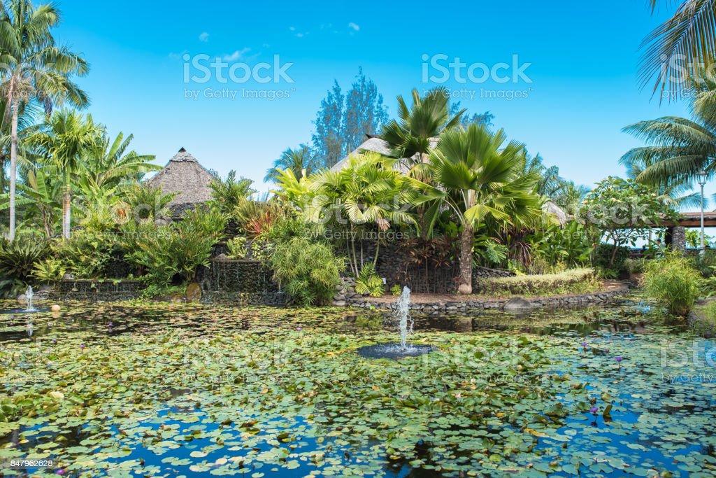 Papeete, Paofai gardens stock photo