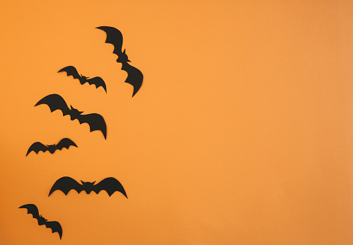 Paper bats flying on orange background. Halloween decoration concept