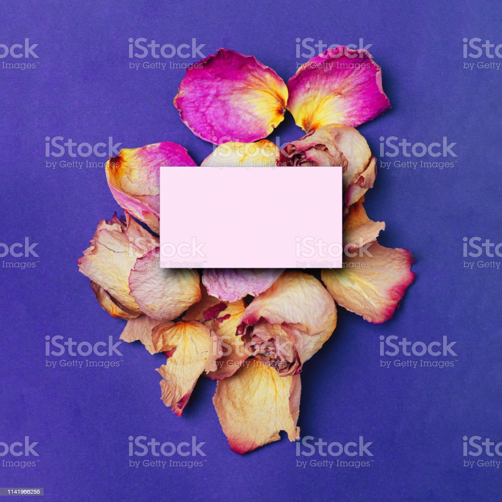 paper card note for wedding or family photo album, frame with violet...
