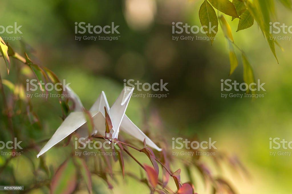 Paper crane on the tree in garden photo libre de droits