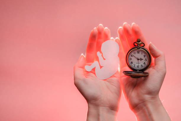 Paper embryo silhouette and clock in woman hands with light light picture id1169198906?b=1&k=6&m=1169198906&s=612x612&w=0&h=9brvh vfmr5f 1 xft8fzxhs6jtroakmksa rac27hs=