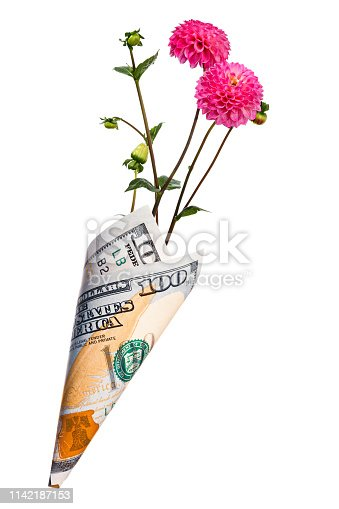 Paper money bag out of one hundred dollars with pink dahlia flowers isolated on a white background