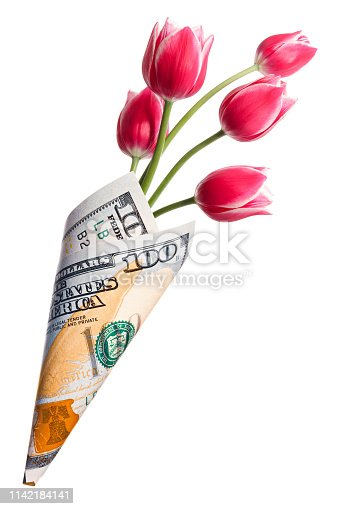 Paper money bag out of one hundred dollars with pink tulip flowers isolated on a white background
