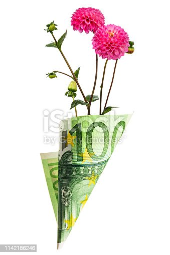 Paper money bag out of one hundred euros with pink dahlia flowers isolated on a white background