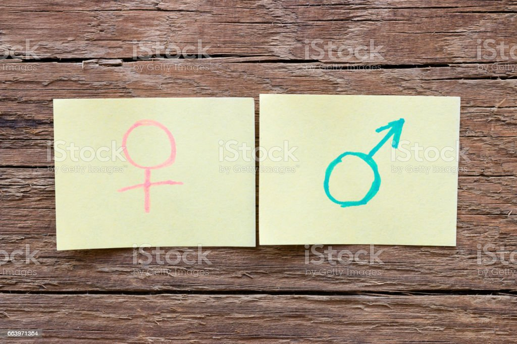 paper notes with the male and female gender symbols closeup – Foto