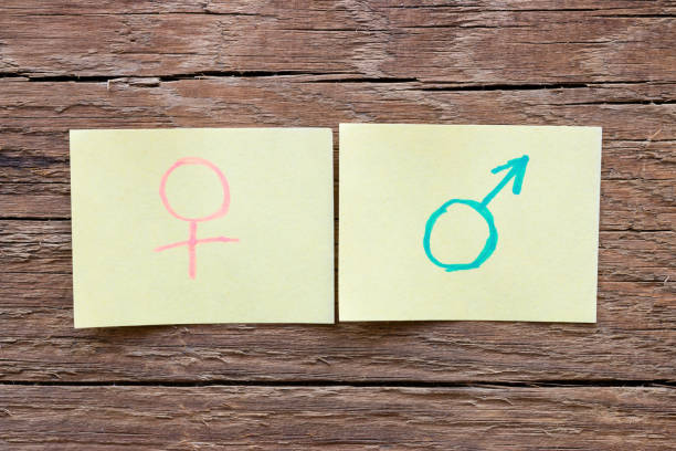 paper notes with the male and female gender symbols closeup - gender stereotypes stock pictures, royalty-free photos & images