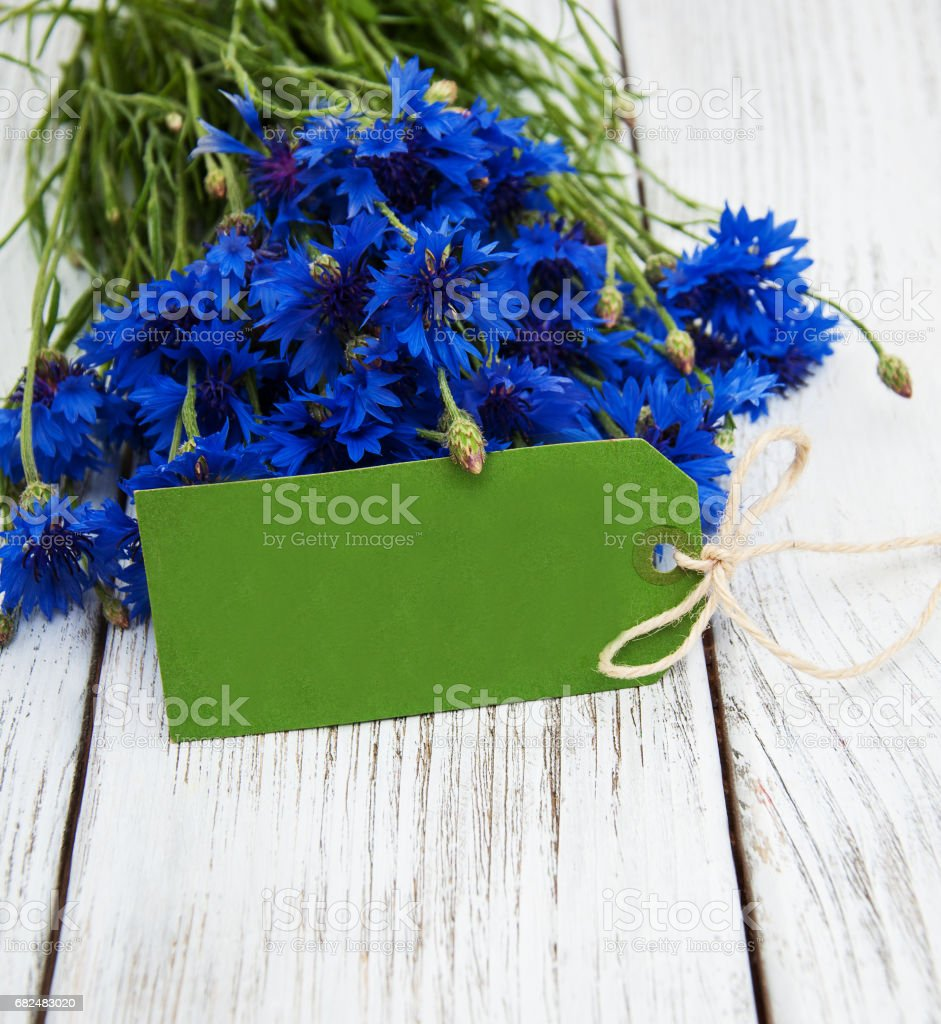 paper tag with  cornflowers royalty-free stock photo