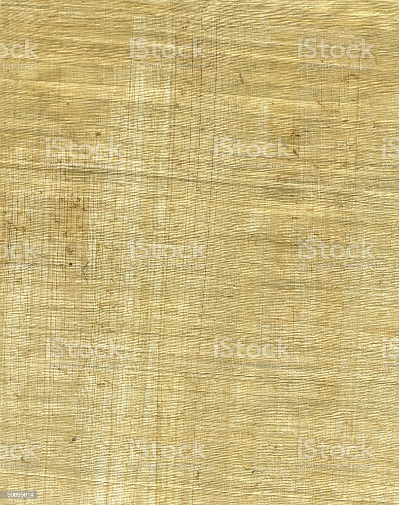 paper texture 3 - papyrus royalty-free stock photo