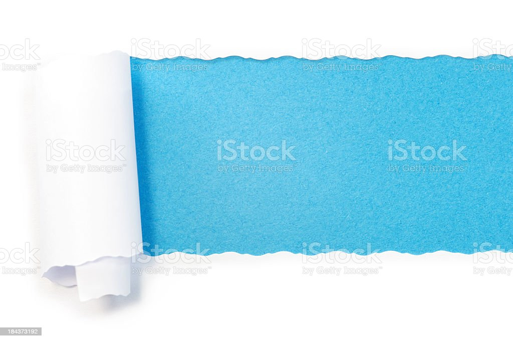 Paper torn into roll revealing blue underneath stock photo