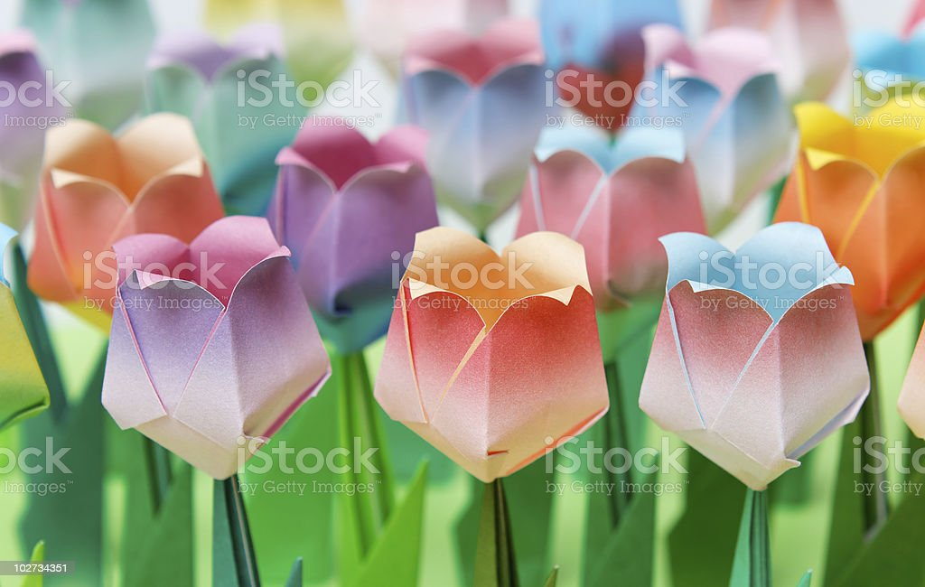 Paper tulip field stock photo