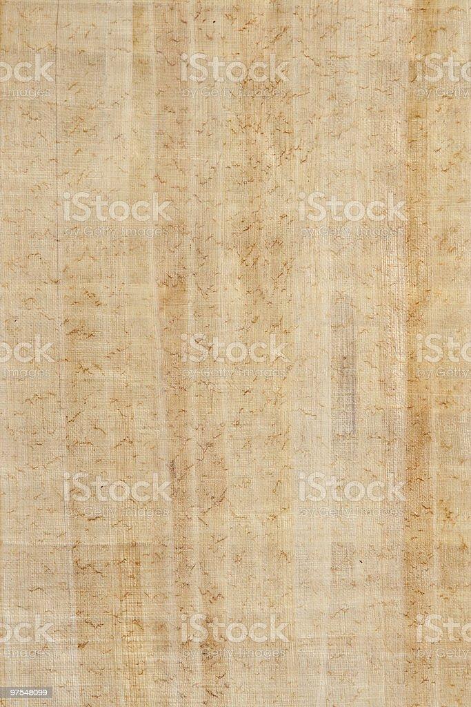 Papryus Gros plan de la Texture photo libre de droits