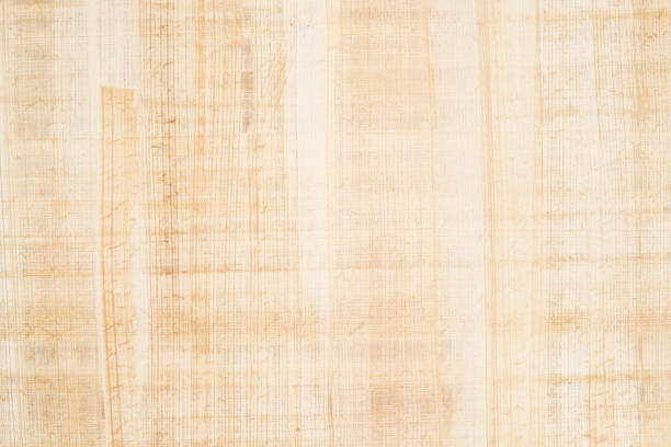 Papyrus Fine antique papyrus as background, paper texture papyrus paper stock pictures, royalty-free photos & images