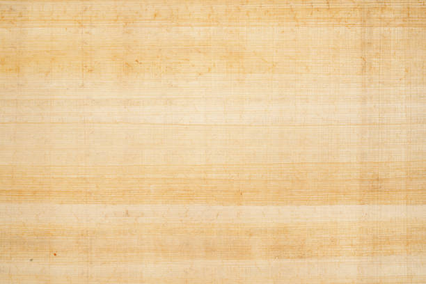 Papyrus texture as background Antique papyrus as background, paper texture papyrus paper stock pictures, royalty-free photos & images