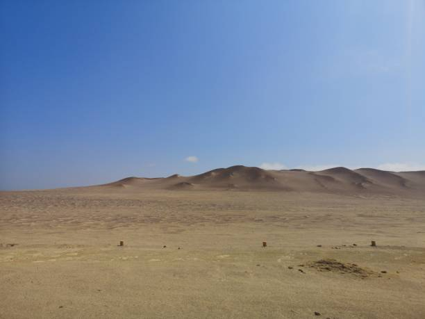 Paracas national reserve in the south of peru stock photo