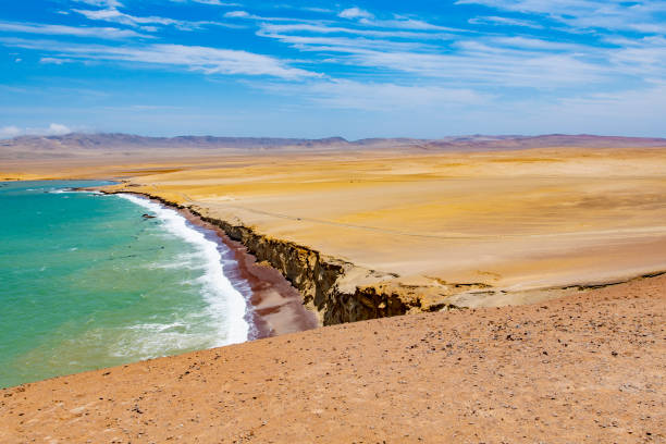 Paracas National Reserve The desert of the Paracas National Reserve in south west Peru, South America. pisco peru stock pictures, royalty-free photos & images