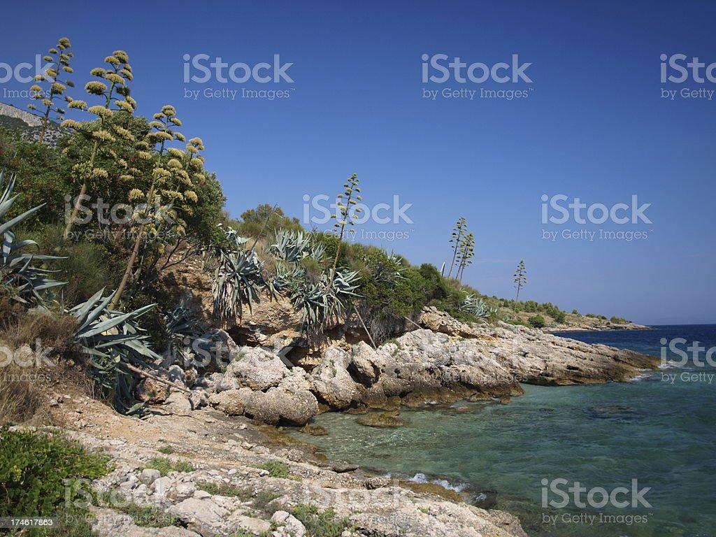 Paradise Adriatic coastline royalty-free stock photo