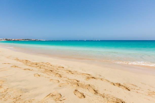 Paradise beach and ocean stock photo