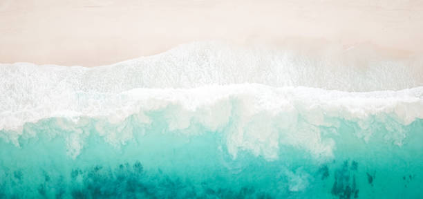 Paradise Beach and Waves from Above