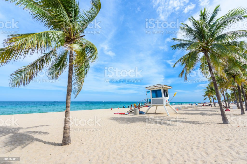 Paradise beach at Fort Lauderdale in Florida on a beautiful sumer day. Tropical beach with palms at white beach. USA. stock photo