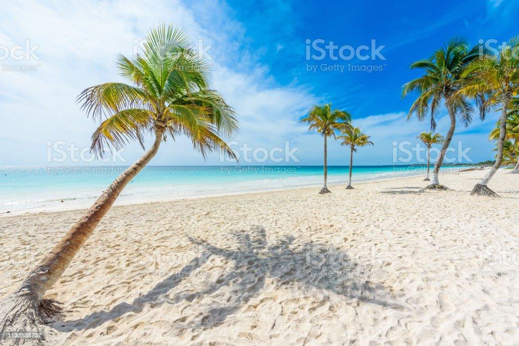 Poster Beauty Beach • Pixers® - We leven om te veranderen | 683x1024