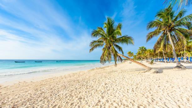 Paradise Beach (auch bekannt für Playa Paraiso) an sonnigen Sommertagen-schöne und tropische Küste in Tulum in Quintana Roo, Riviera Maya, Cancun, Mexiko – Foto