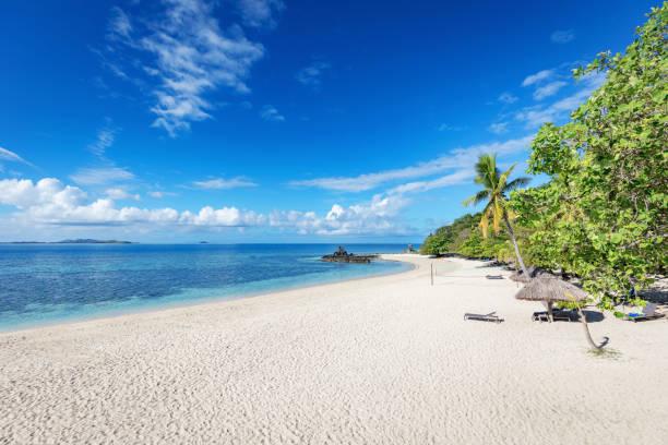 paradise beach castaway island fiji mamanuca islands melanesia - fiji stock photos and pictures