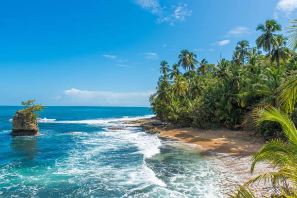 Paradise beach of Manzanillo at Puerto Viejo, Costa Rica Wild caribbean beach of Manzanillo at Puerto Viejo, Limon, Costa Rica limoen stock pictures, royalty-free photos & images