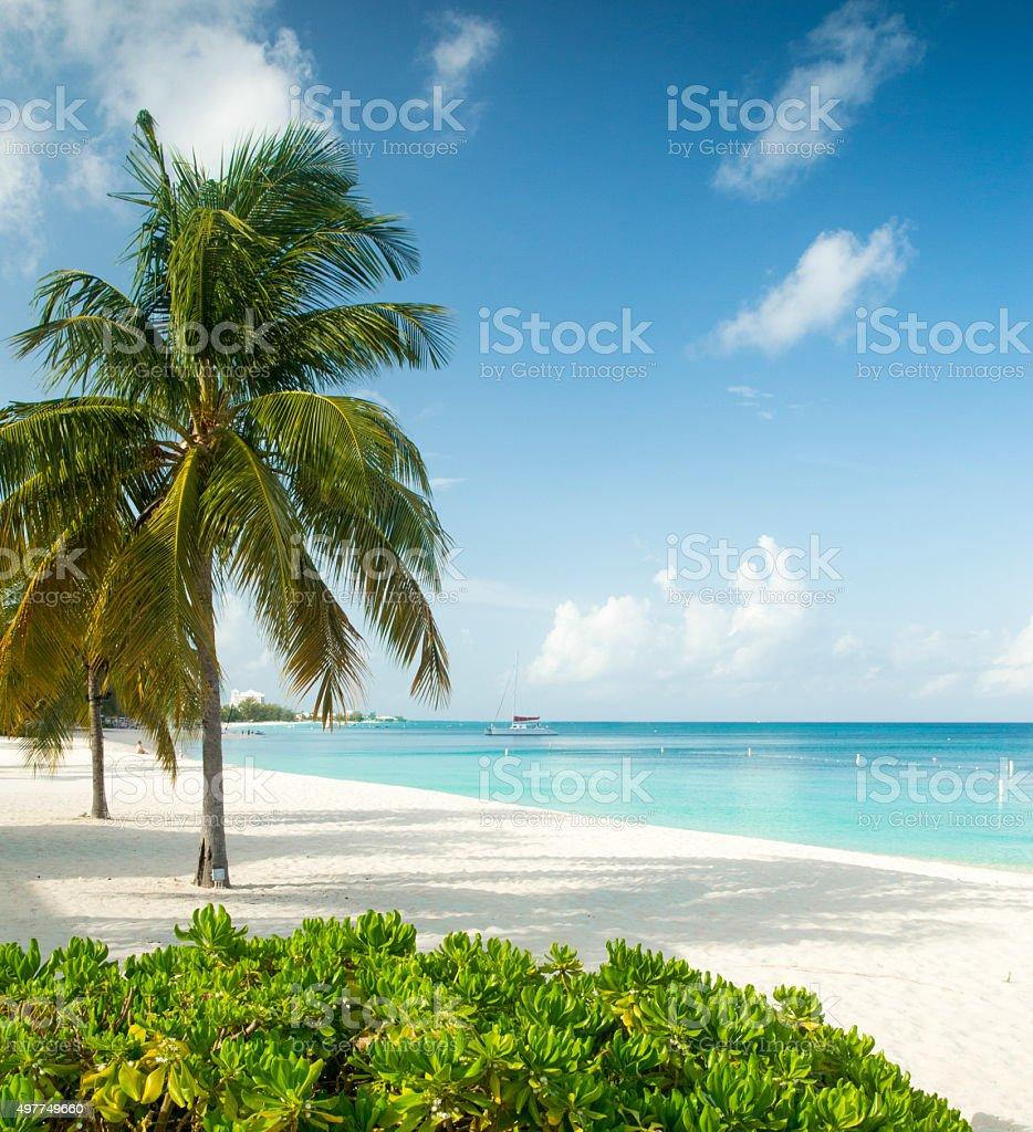 Tropical Island Paradise: Paradise Beach On A Tropical Island Stock Photo